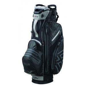 Big Max Aqua V-1 Cart Bag - Black/Silver